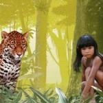 A Amazônia no cinema.