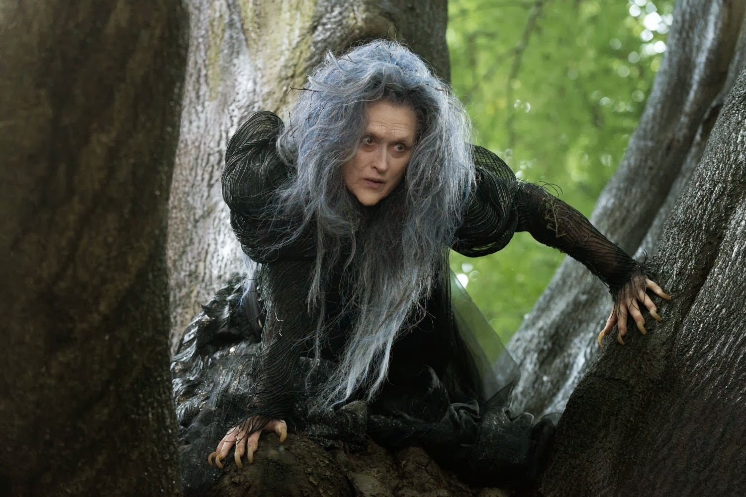 Into The Woods Movie Meryl
