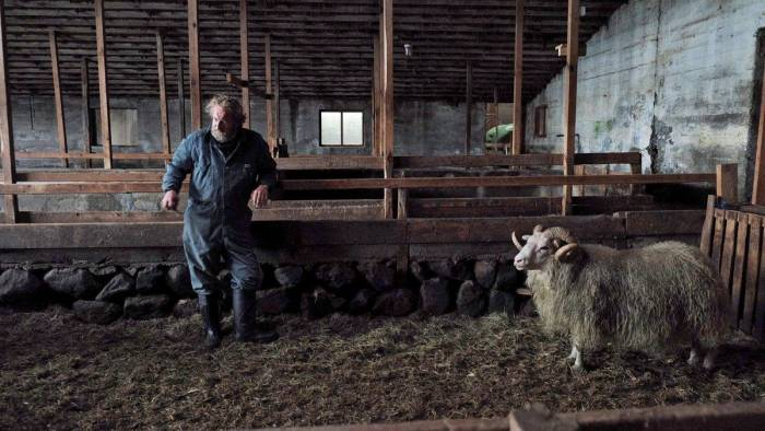 ovelha-negra-filme
