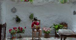 Dor e Glória (Dolor y Gloria), de Pedro Almodóvar. Cena com o menino Asier Flores sentado na cadeira, paredes brancas e flores atrás, lendo um livro.