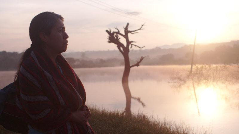 Sin Señas Particulares - filme exibido no Festival de Sundance 2020